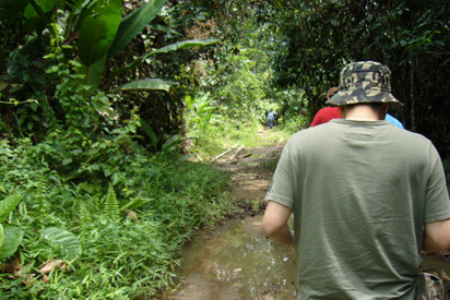 Walking through the jungle to find the secret waterfall