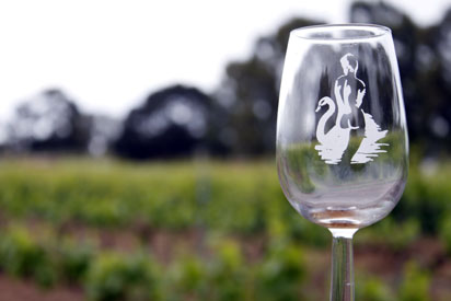 Wine Glass in Vineyard