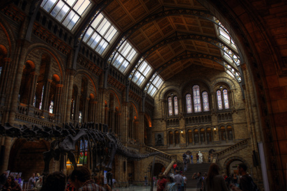 Inside of Natural History Museum